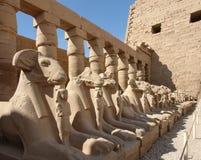 Enceinte d'Amun-re en Egypte photos stock