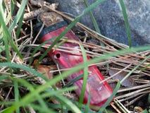 Encendedor disponible abandonado Foto de archivo libre de regalías