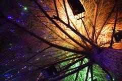 Encendiendo el árbol de navidad dentro Juguetes de la Navidad de la noche dresse Imagen de archivo libre de regalías