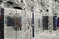 Enchant λαβύρινθος και αγορά Χριστουγέννων ελαφρύς Στοκ εικόνα με δικαίωμα ελεύθερης χρήσης