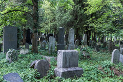 Enchanted Cemetery. Graves at Cemetery in Vienna stock photos