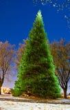 Enchanted Christmas Tree. Enchanted glowing Christmas tree on dark blue sky Stock Photos