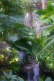 Enchanted Forest. Small waterfall and stream surround by foliage and trees royalty free stock photos