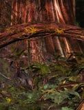 Enchanted forest background. 3D Digital render of a forest scene stock illustration