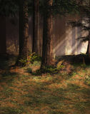Enchanted forest. A 3D enchanted forest scene royalty free stock photography