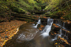 Enchanted Forest. Magical lower Scaleber Falls, UK Stock Photography