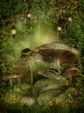 Enchanted forest with mushrooms. And rocks Royalty Free Stock Images