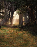 Enchanted forest scene. A 3D enchanted forest scene Stock Photography