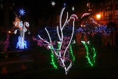 Enchanted garden. The magic enchanted garden of salerno during christmas time Stock Images