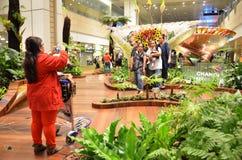 Enchanted garden at Changi international airport, Singapore. SINGAPORE  - MAR 25: Enchanted garden at Changi international airport on March 25, 2015 in Singapore Royalty Free Stock Photo