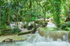 Enchanted gardens in Jamaica Stock Photos