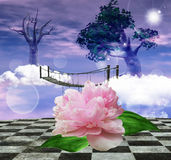 Enchanted nature series - surreal nature. A surreal artwork with a big peony flower close up Stock Photo