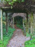 An enchanted path Royalty Free Stock Photography