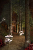 Enchanted pathway in the fairies forest. Enchanted nature series - Enchanted pathway in the fairies forest stock illustration