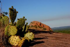 Enchanted Rock. View of Enchanted Rock, Texas peering behind cactus Royalty Free Stock Images