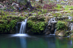 Enchanted small waterfall. Surrounded by the untouched Royalty Free Stock Photos