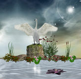 Enchanted swan. Beautiful lake with an enchanted swan Royalty Free Stock Image