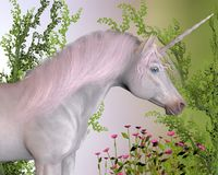 Enchanted Unicorn royalty free stock photo