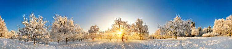 Enchanted winter landscape panorama after sunrise royalty free stock photos