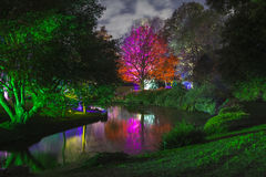 Enchanted Woodland in Syon Park. The beautiful Enchanted Woodland in Syon Park, London stock photo