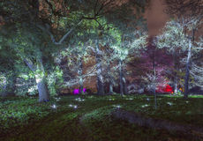 Enchanted Woodland in Syon Park. The beautiful Enchanted Woodland in Syon Park, London royalty free stock photos