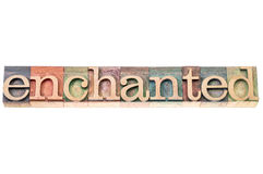 Enchanted word typography Royalty Free Stock Photo
