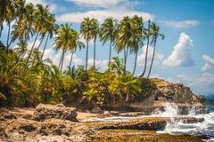 Enchanting Beach. Rocky beach with cliffs and palm tress Stock Photos