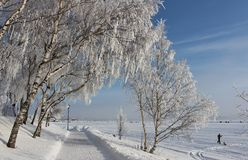 An enchanting beautiful walk in Luleå Stock Images