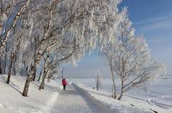 An enchanting beautiful walk in Luleå Royalty Free Stock Photo