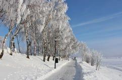An enchanting beautiful walk in Luleå Royalty Free Stock Images