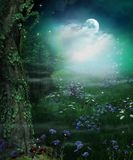 Enchanting Fairy Forest Opening at Night and Full Moon. 3d render illustration stock image