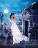 Enchanting Ghost Grief of Love Lost Spooky Cemetary vector illustration