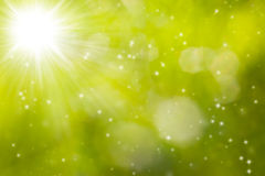 Enchanting green background. Enchanting spring background with sparkles and sun Royalty Free Stock Photos