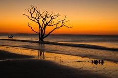 Enchanting sunrise. A glowing sunrise at Botany Bay beach on Edisto island , South Carolina Royalty Free Stock Photography
