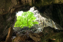 Enchanting tropical mountain cave Stock Photos
