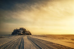 Enchanting winter landscape and sunset snowy field fog Royalty Free Stock Photos