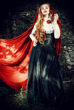 Enchantress Royalty Free Stock Images