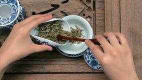 Enchendo um bule marrom através de um funil Copos chineses da porcelana, colher de chá de aço Preto, verde, puerh, oolong, tiegua Fotos de Stock Royalty Free