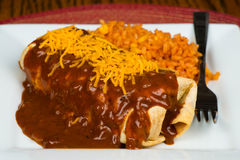 Enchilada with traditional sauce Royalty Free Stock Photo