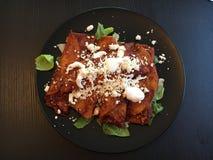 enchiladas Lizenzfreies Stockfoto