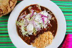 Enchiladas de mole and rice Mexican food Royalty Free Stock Images