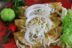 Enchiladas de poulet avec de la sauce verte Images stock