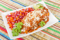 Enchiladas de poulet et de chorizo Photos libres de droits