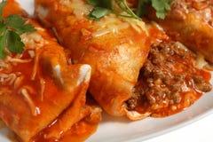 Enchiladas macro tomato sauce Royalty Free Stock Image