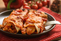 Enchiladas - mexican food, tortilla with chicken, cheese and tomatoes. royalty free stock photography