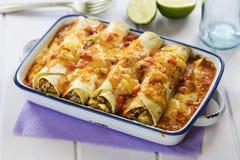 Enchiladas picantes da carne Fotografia de Stock