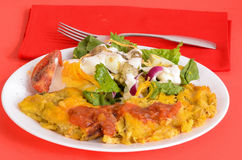 Enchiladas and Salad Stock Images