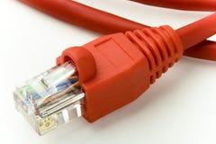 Enchufe de Ethernet Imágenes de archivo libres de regalías