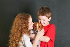 Enchufe lindo Russell del perrito del abarcamiento del pequeño niño Foto de archivo libre de regalías