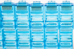 Enchufes azules del lan de Ethernet rj45 Fotografía de archivo